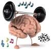 Musisi Miliki Ingatan dan Pendengaran yang Lebih Baik