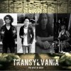 Profile: TRANSYLVANIA