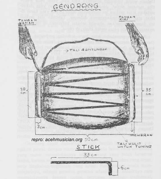 anatomi gendrang